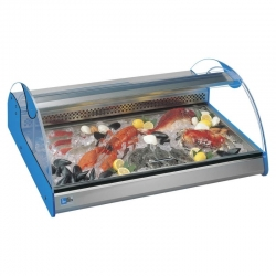 Tecfrigo Azzurra 2 2 x 1/1 Pan Counter Top Fish Display