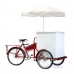 Optional Trike Carrier